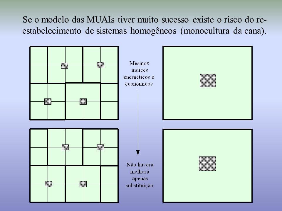 Se o modelo das MUAIs tiver muito sucesso existe o risco do re- estabelecimento de sistemas homogêneos (monocultura da cana).