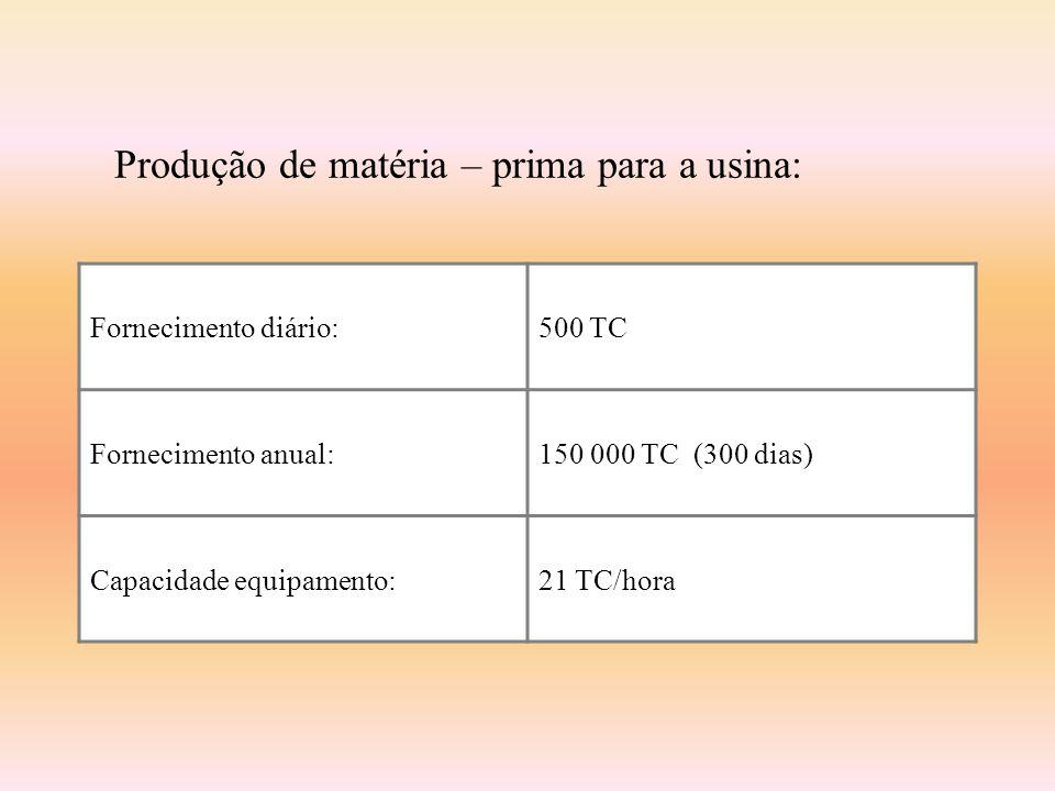 Produtos Empregos fixos131 (25% terceirizados) Etanol 40 000 litros por dia x 300 dias/ano: 1 200 000 L/ano R$ 0.40/L (ao produtor) Eletricidade 73 210 MWH/ano US$ 35.29/MWH Produtos pecuários948 T/ano Hortaliças3 630 T/ano