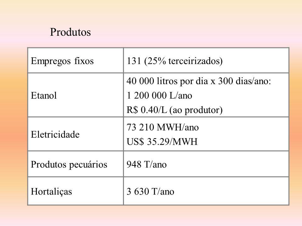 Produtos Empregos fixos131 (25% terceirizados) Etanol 40 000 litros por dia x 300 dias/ano: 1 200 000 L/ano R$ 0.40/L (ao produtor) Eletricidade 73 21