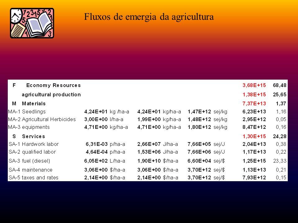 Tabela de fluxos de emergia