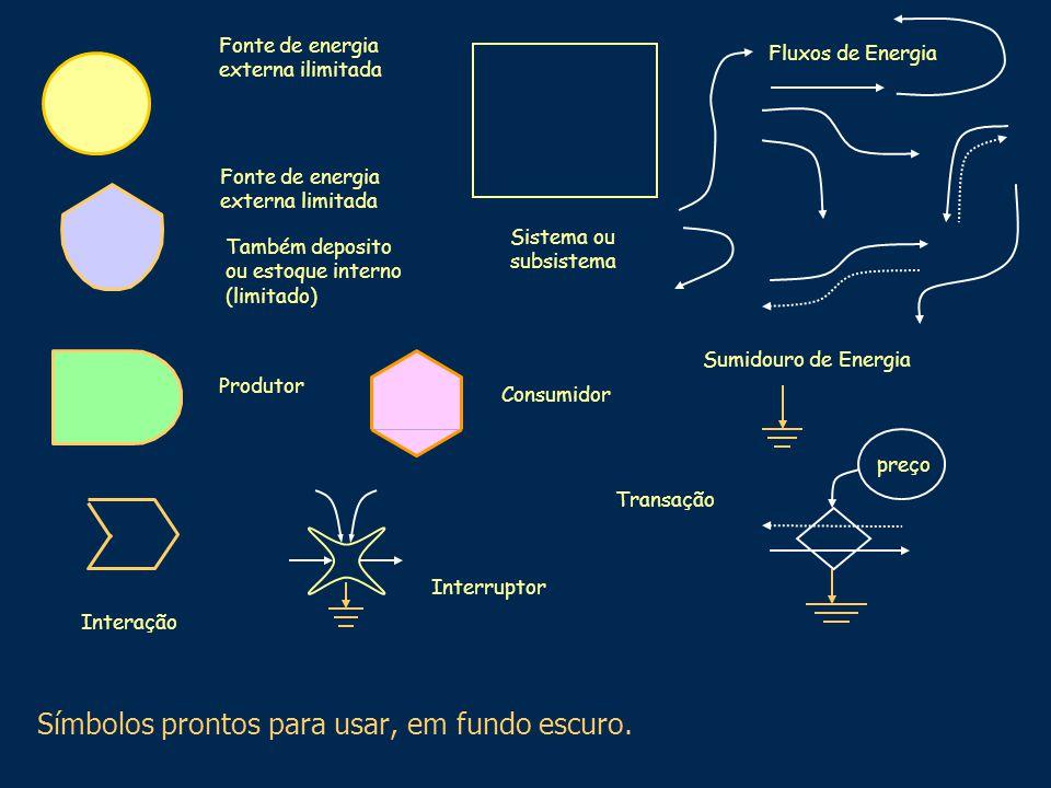 Fluxos de Energia Produtor Fonte de energia externa ilimitada Também deposito ou estoque interno (limitado) Transação preço Sumidouro de Energia Fonte