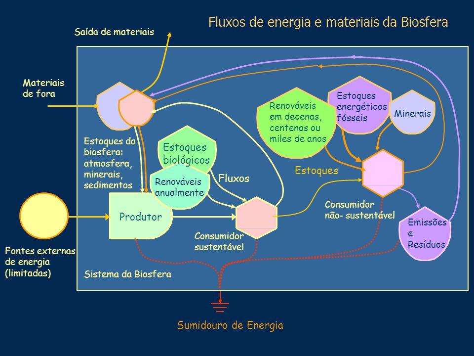 Fontes externas de energia (limitadas) Sumidouro de Energia Sistema da Biosfera Fluxos de energia e materiais da Biosfera Produtor Estoques da biosfer