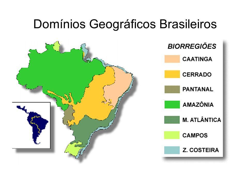 Proposta da Agenda 21 Brasileira Mais do que um documento, a Agenda 21 Brasileira é um processo de planejamento participativo que analisa a situação atual do País, Estados, Municípios e Regiões, e planeja o futuro de forma sustentável.