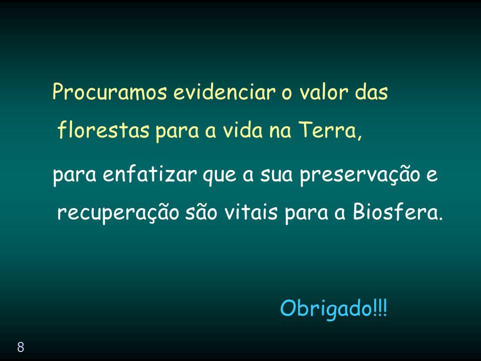 8 Procuramos evidenciar o valor das florestas para a vida na Terra, Obrigado!!.