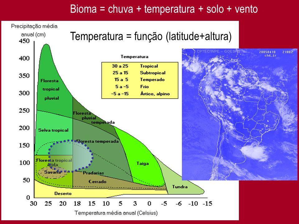 3 Bioma = chuva + temperatura + solo + vento Temperatura = função (latitude+altura)
