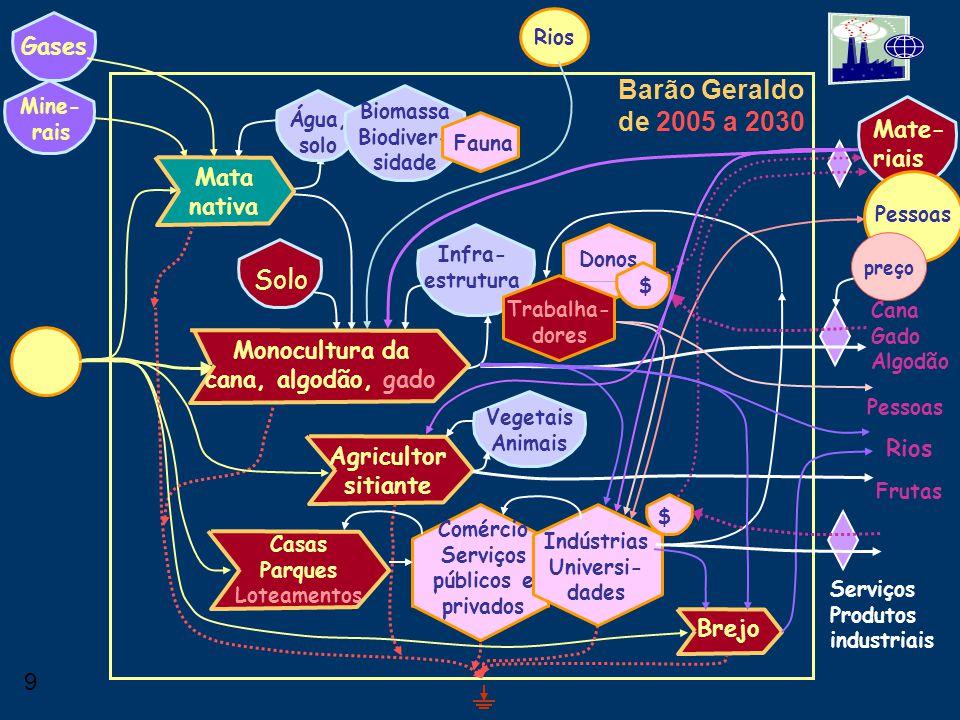8 Barão Geraldo de 1964 a 2005 Água, solo Solo Mine- rais Biomassa Biodiver- sidade Mate- riais Fauna Infra- estrutura Donos Trabalha- dores Gases Mon