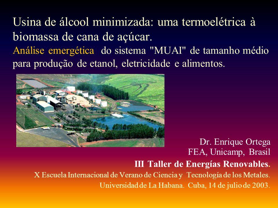 Usina de álcool minimizada: uma termoelétrica à biomassa de cana de açúcar. Análise emergética do sistema
