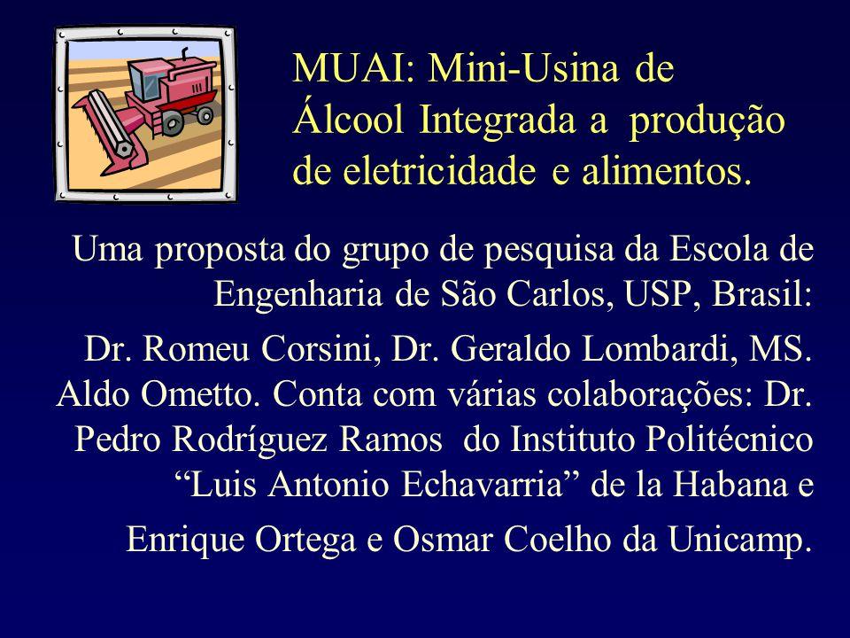 MUAI: Mini-Usina de Álcool Integrada a produção de eletricidade e alimentos. Uma proposta do grupo de pesquisa da Escola de Engenharia de São Carlos,