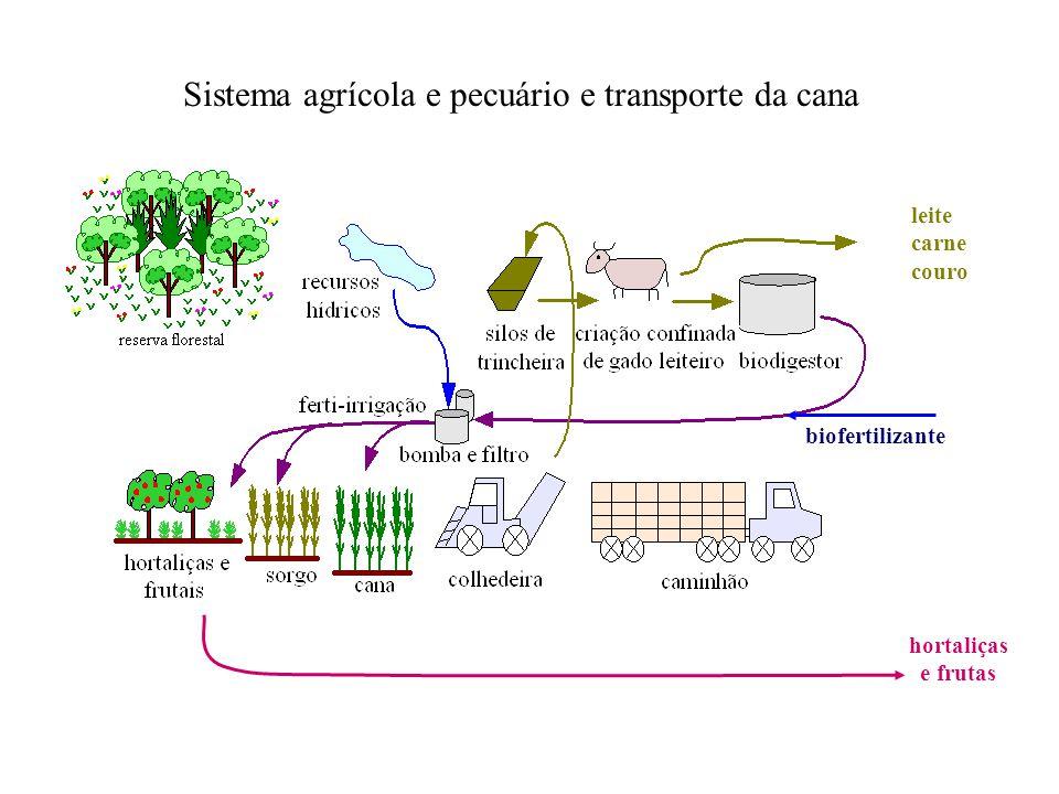 leite carne couro hortaliças e frutas Sistema agrícola e pecuário e transporte da cana biofertilizante