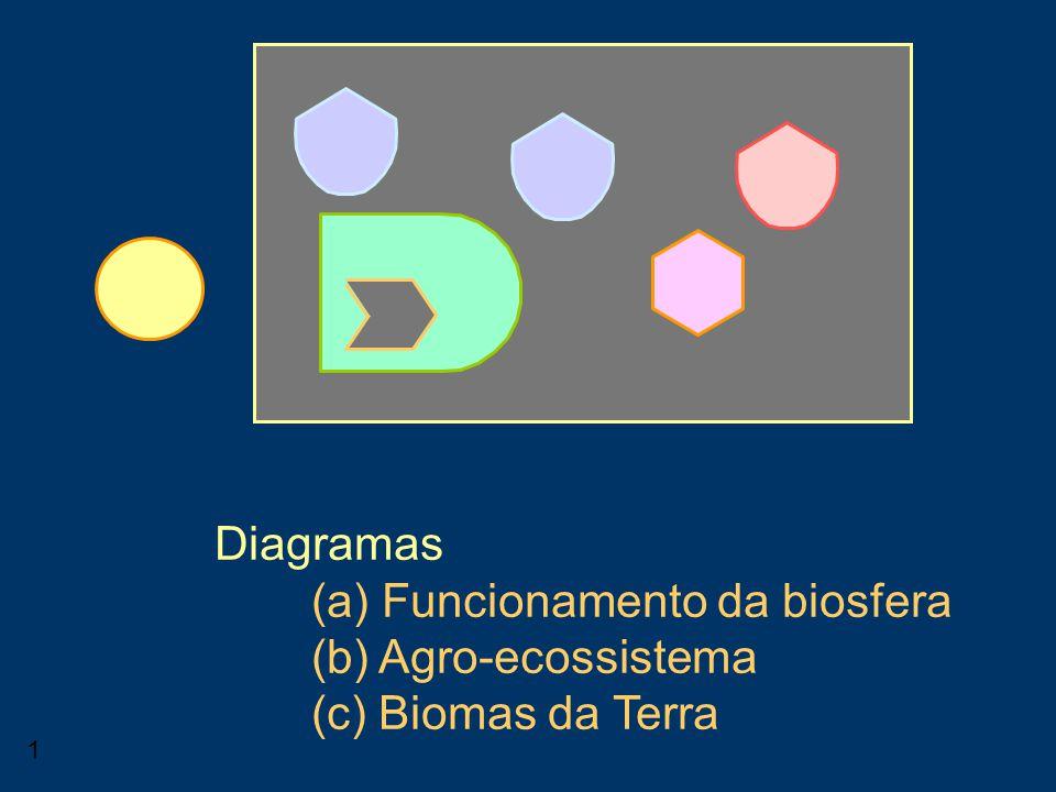 1 Consumidor Diagramas (a) Funcionamento da biosfera (b) Agro-ecossistema (c) Biomas da Terra