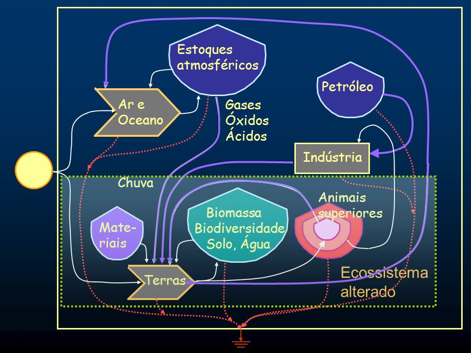 18 Ecossistema alterado Ar e Oceano Terras Mate- riais Petróleo Biomassa Biodiversidade Solo, Água Gases Óxidos Ácidos Indústria Estoques atmosféricos Chuva Animais superiores