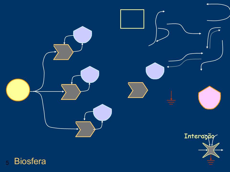 5 Interação Biosfera