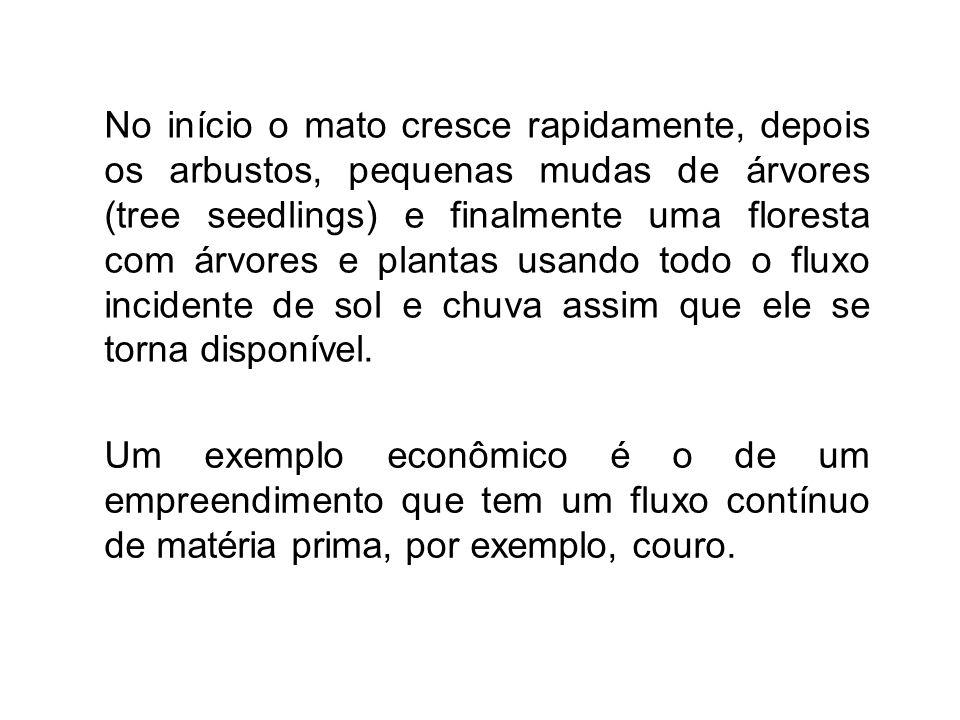 Um exemplo econômico é o de um empreendimento que tem um fluxo contínuo de matéria prima, por exemplo, couro. No início o mato cresce rapidamente, dep