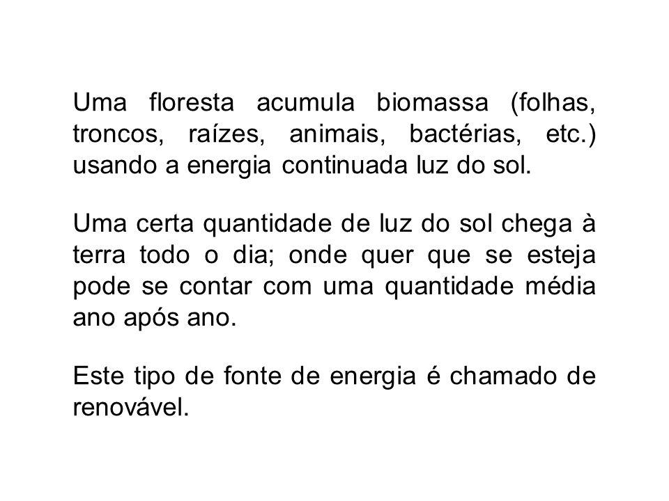 Uma floresta acumula biomassa (folhas, troncos, raízes, animais, bactérias, etc.) usando a energia continuada luz do sol. Este tipo de fonte de energi