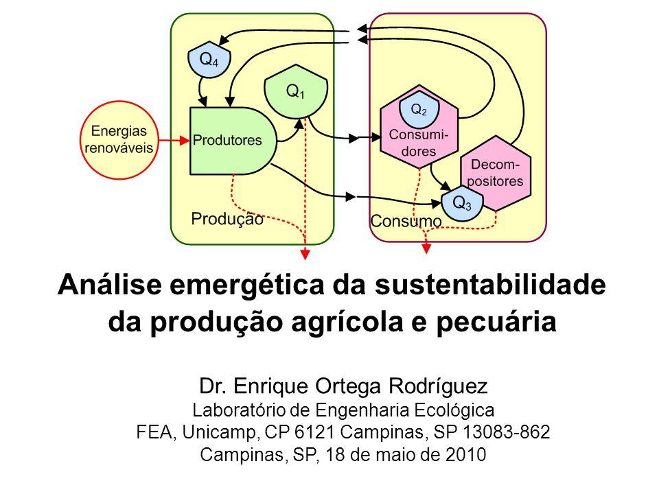 Dr. Enrique Ortega Rodríguez Laboratório de Engenharia Ecológica FEA, Unicamp, CP 6121 Campinas, SP 13083-862 Campinas, SP, 18 de maio de 2010 Análise