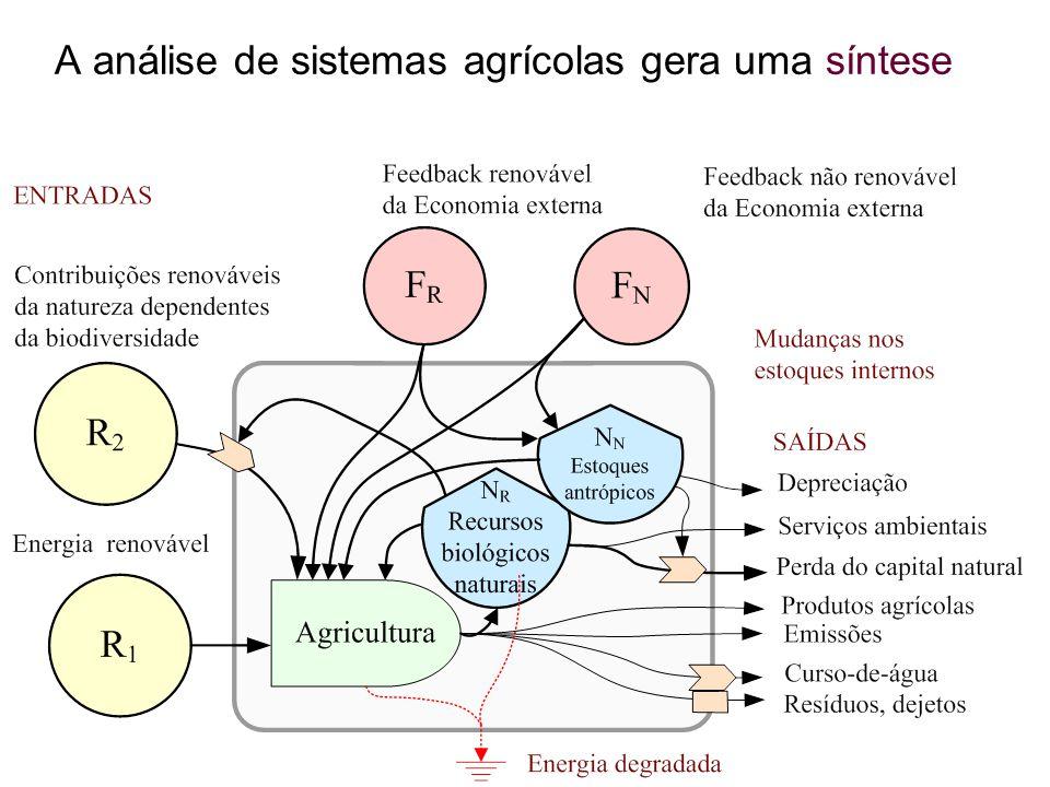 A análise de sistemas agrícolas gera uma síntese