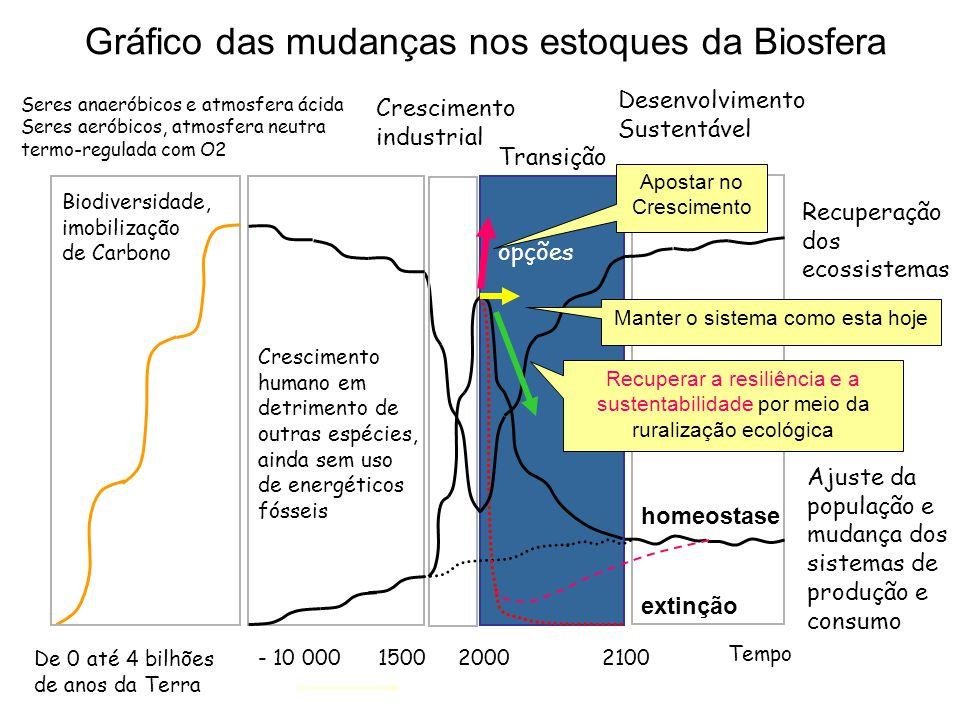 Tempo Seres anaeróbicos e atmosfera ácida Seres aeróbicos, atmosfera neutra termo-regulada com O2 - 10 000 Desenvolvimento Sustentável De 0 até 4 bilh
