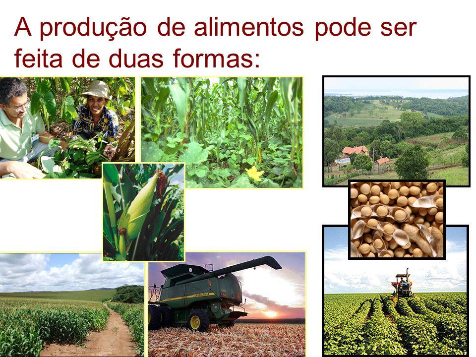 A produção de alimentos pode ser feita de duas formas: