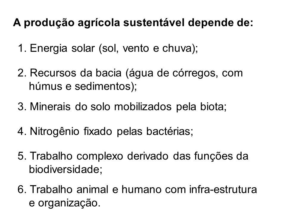 A produção agrícola sustentável depende de: 1. Energia solar (sol, vento e chuva); 2. Recursos da bacia (água de córregos, com húmus e sedimentos); 3.