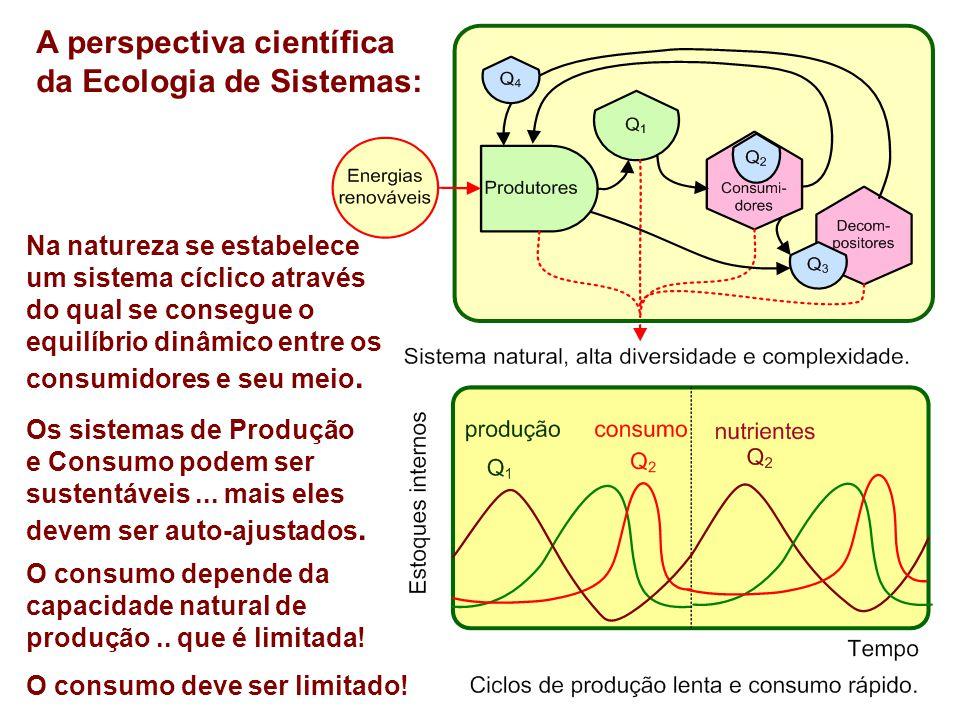 A perspectiva científica da Ecologia de Sistemas: Na natureza se estabelece um sistema cíclico através do qual se consegue o equilíbrio dinâmico entre