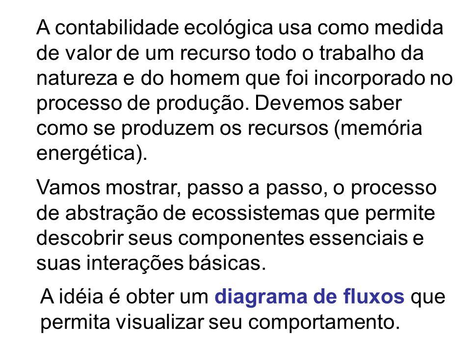 Vamos mostrar, passo a passo, o processo de abstração de ecossistemas que permite descobrir seus componentes essenciais e suas interações básicas. A c
