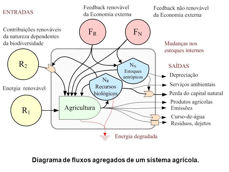Diagrama de fluxos agregados de um sistema agrícola.