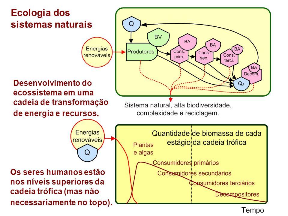 Ecologia dos sistemas naturais Desenvolvimento do ecossistema em uma cadeia de transformação de energia e recursos. Os seres humanos estão nos níveis