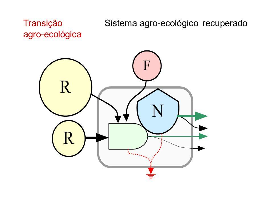 Sistema agro-ecológico recuperado Transição agro-ecológica