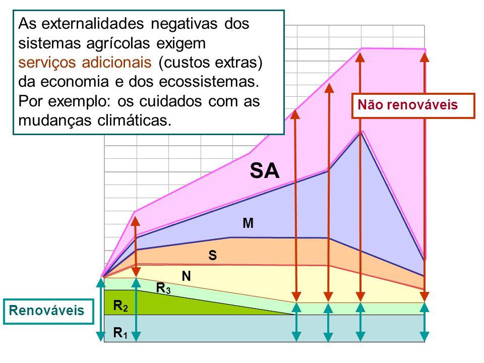 R1R1 R2R2 R3R3 N S M SA As externalidades negativas dos sistemas agrícolas exigem serviços adicionais (custos extras) da economia e dos ecossistemas.