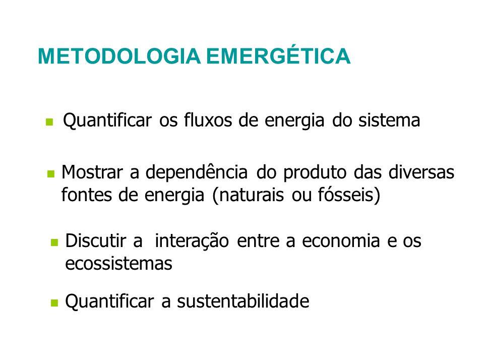 METODOLOGIA EMERGÉTICA Discutir a interação entre a economia e os ecossistemas Mostrar a dependência do produto das diversas fontes de energia (natura