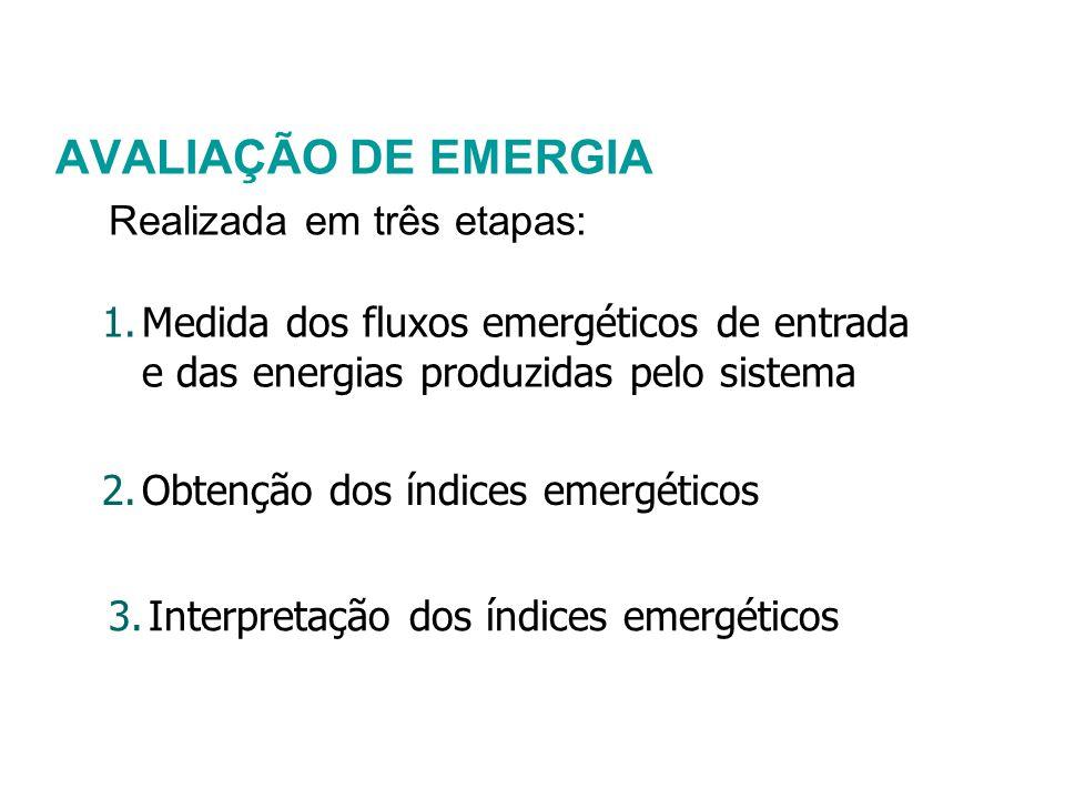 AVALIAÇÃO DE EMERGIA Realizada em três etapas: 1.Medida dos fluxos emergéticos de entrada e das energias produzidas pelo sistema 2.Obtenção dos índice