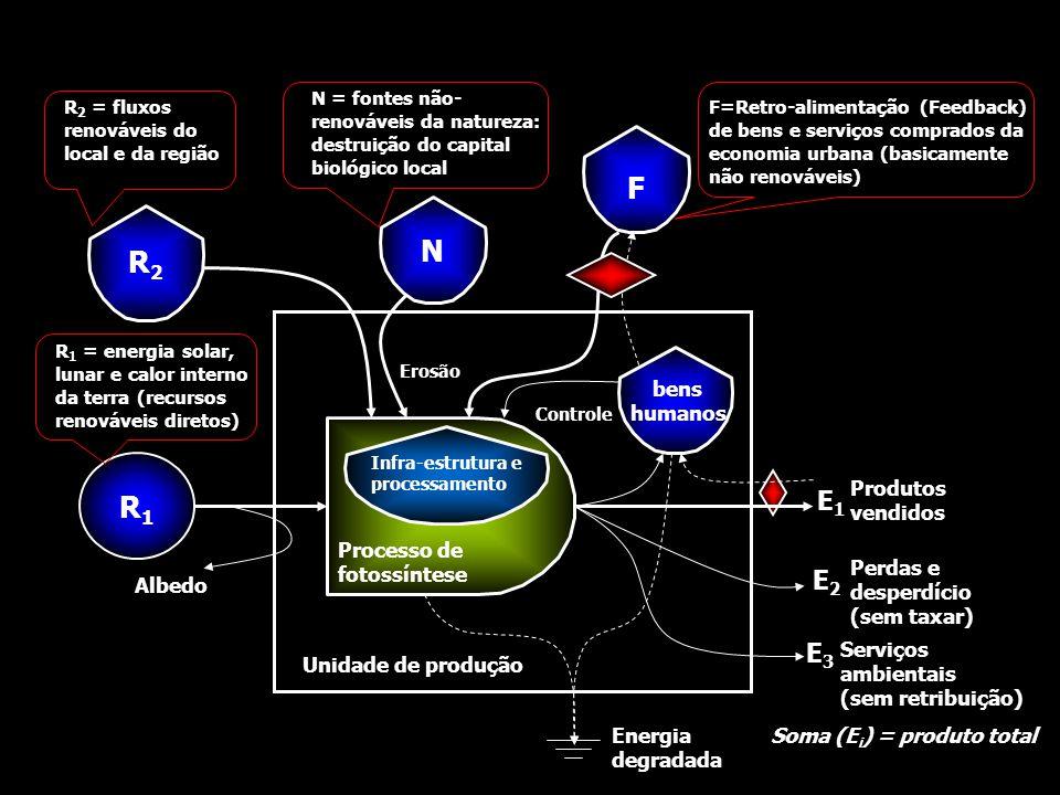 R1R1 Processo de fotossíntese Infra-estrutura e processamento R2R2 N F bens humanos Unidade de produção Energia degradada Produtos vendidos E1E1 Perda
