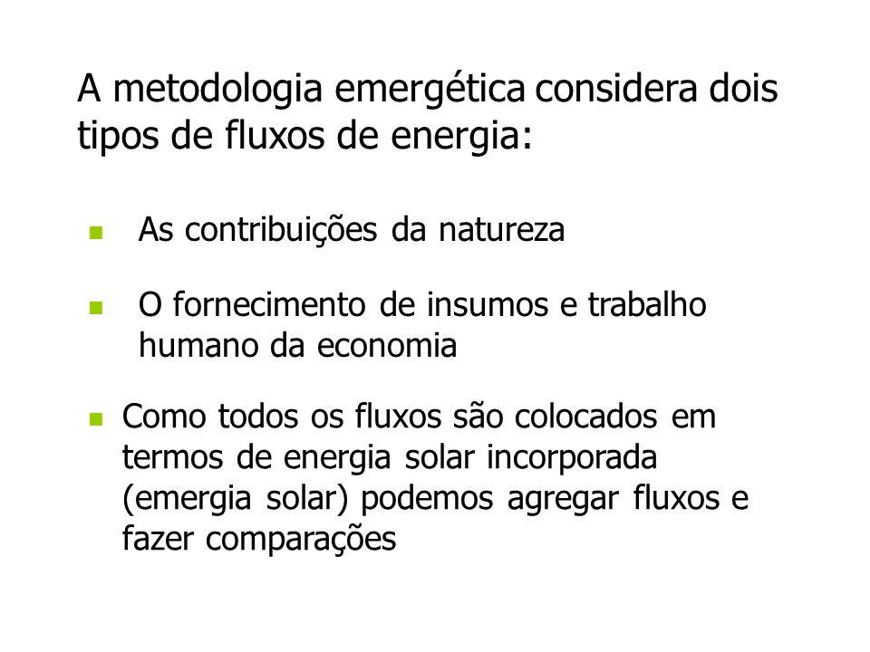 As contribuições da natureza Como todos os fluxos são colocados em termos de energia solar incorporada (emergia solar) podemos agregar fluxos e fazer