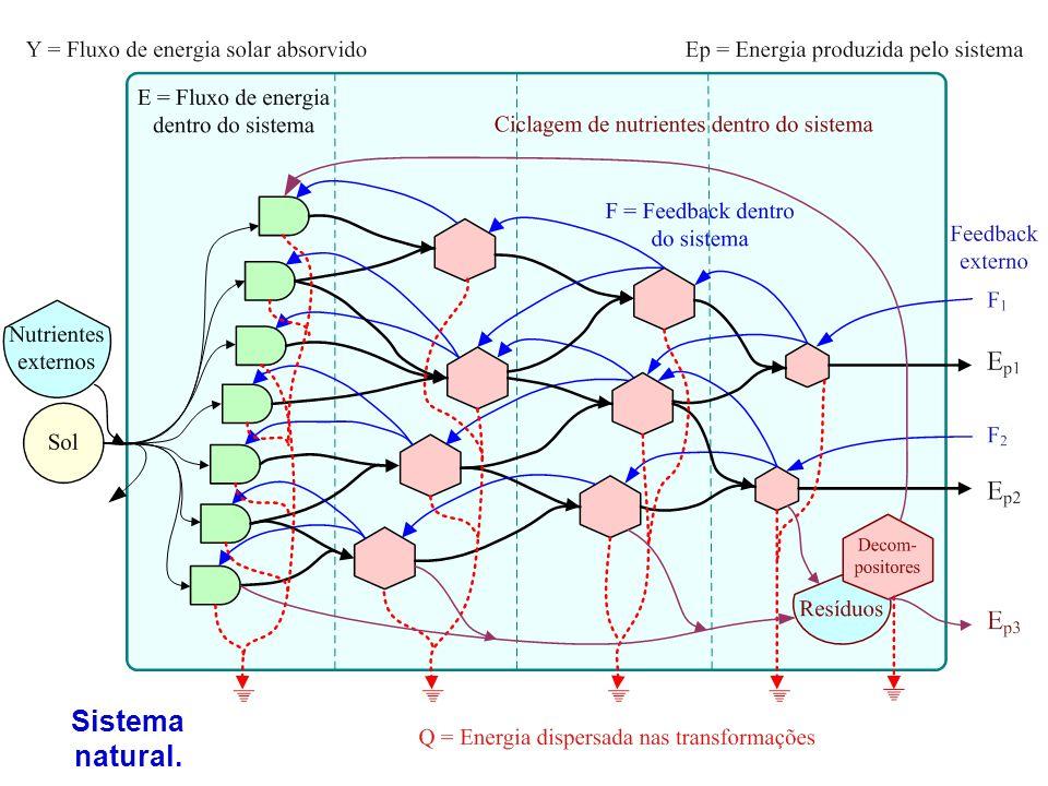 Sistema natural.