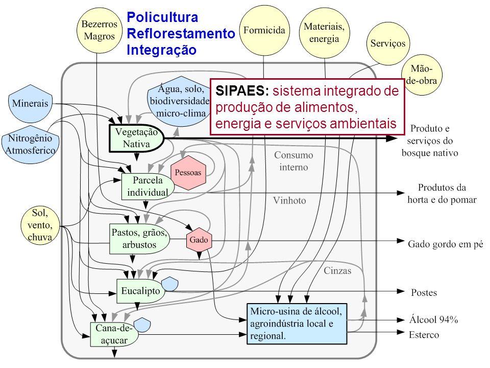 SIPAES: sistema integrado de produção de alimentos, energia e serviços ambientais Policultura Reflorestamento Integração