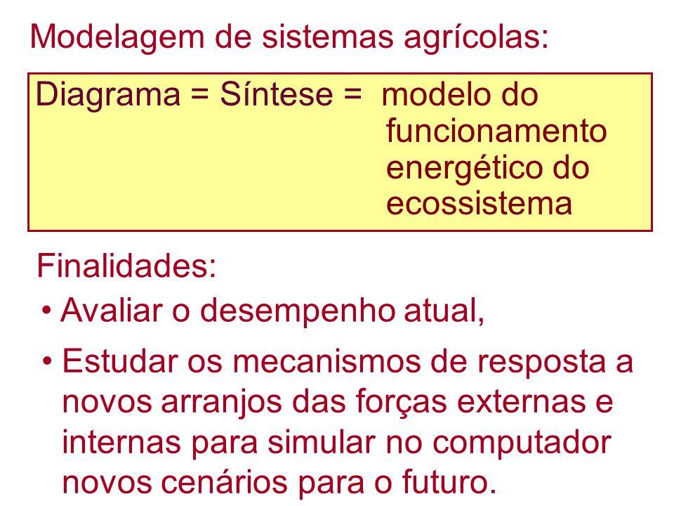 Diagrama = Síntese = modelo do funcionamento energético do ecossistema Finalidades: Avaliar o desempenho atual, Estudar os mecanismos de resposta a no