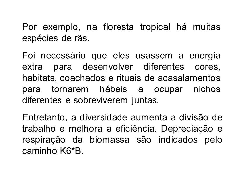 Por exemplo, na floresta tropical há muitas espécies de rãs.