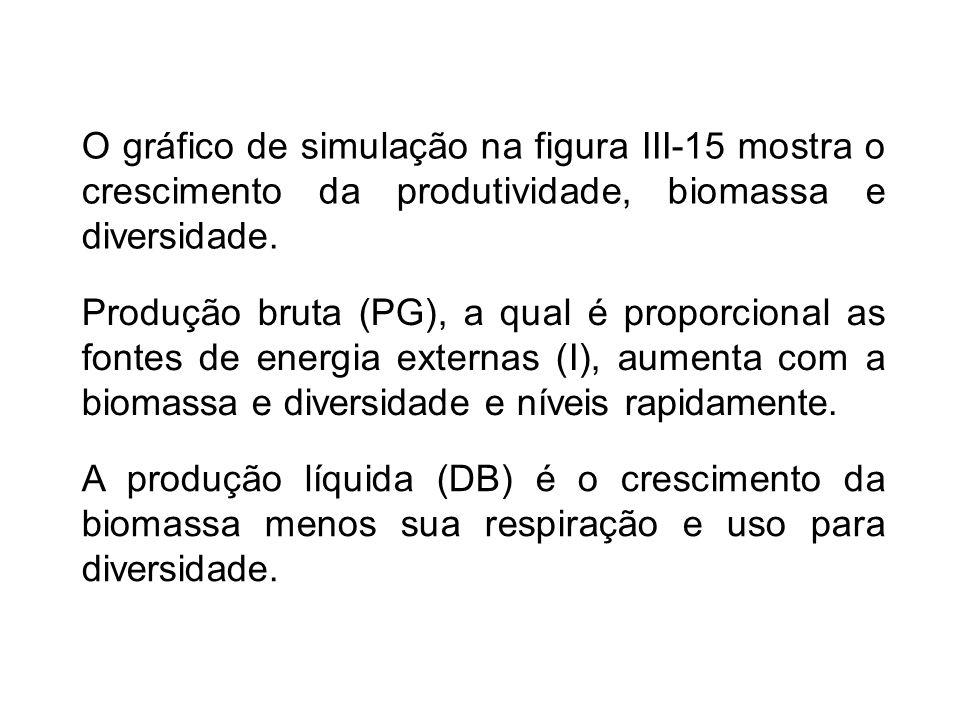A produção líquida (DB) é o crescimento da biomassa menos sua respiração e uso para diversidade.