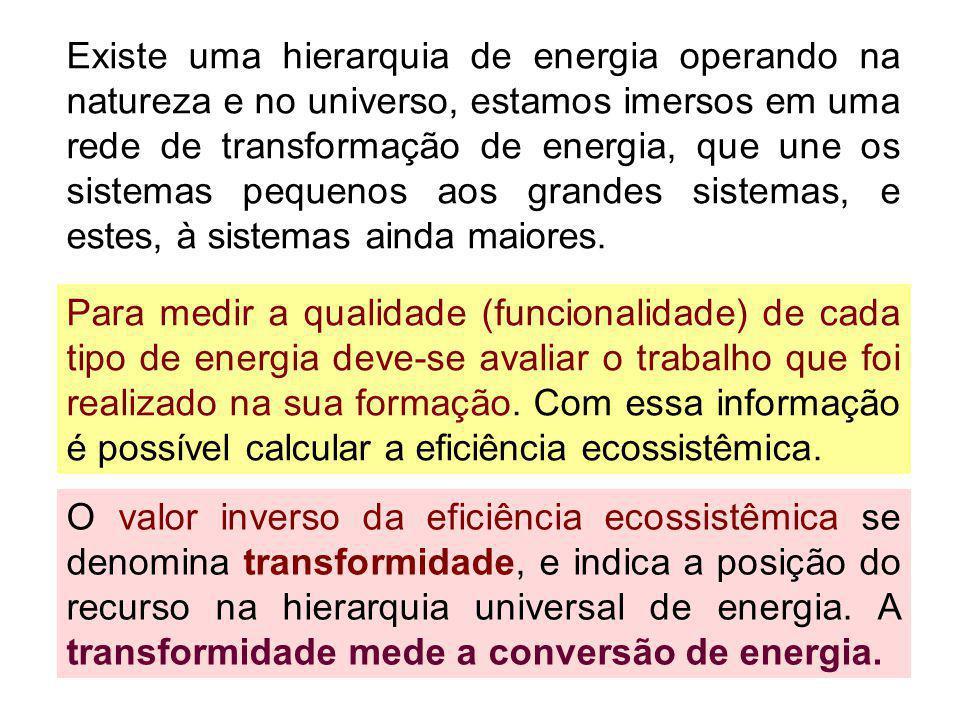 Existe uma hierarquia de energia operando na natureza e no universo, estamos imersos em uma rede de transformação de energia, que une os sistemas pequ