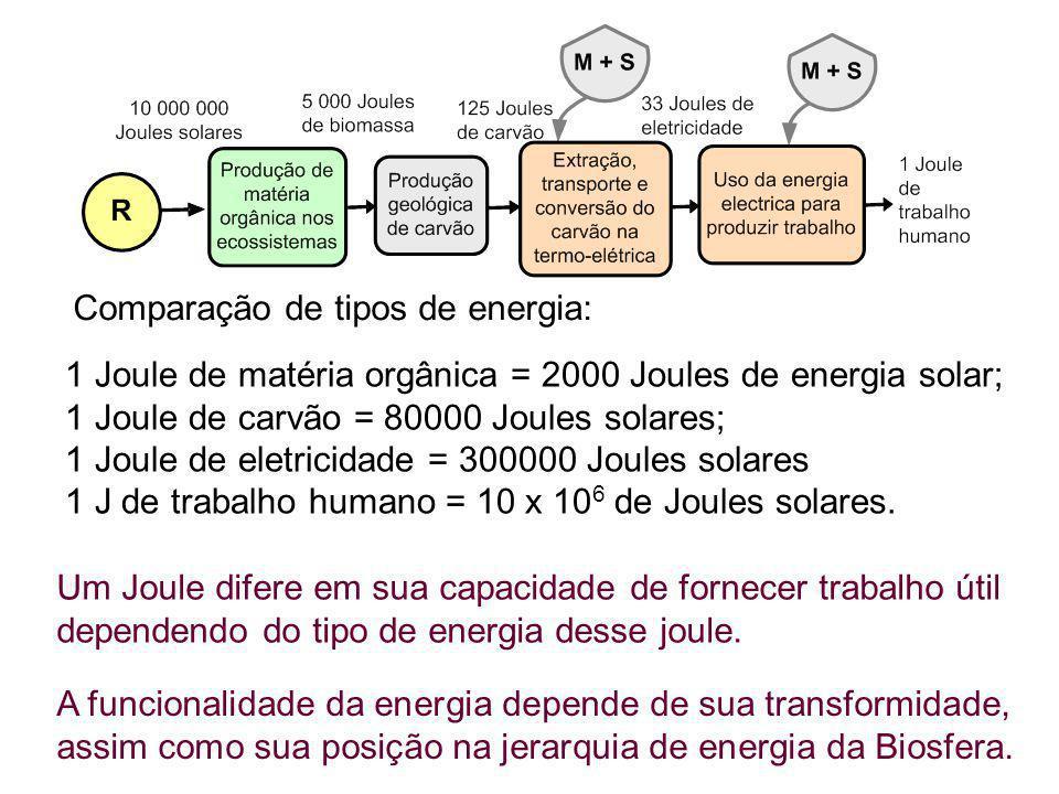 Comparação de tipos de energia: 1 Joule de matéria orgânica = 2000 Joules de energia solar; 1 Joule de carvão = 80000 Joules solares; 1 Joule de eletr