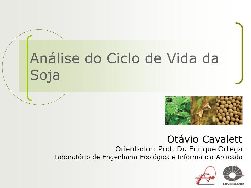 Análise do Ciclo de Vida da Soja Otávio Cavalett Orientador: Prof. Dr. Enrique Ortega Laboratório de Engenharia Ecológica e Informática Aplicada