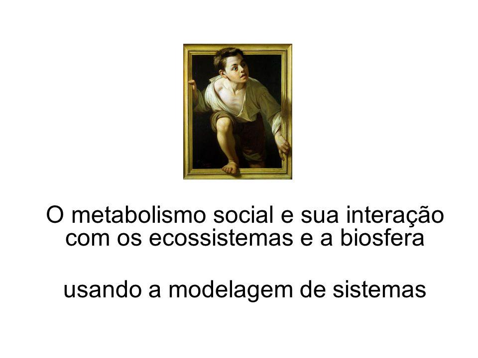 O metabolismo social e sua interação com os ecossistemas e a biosfera usando a modelagem de sistemas