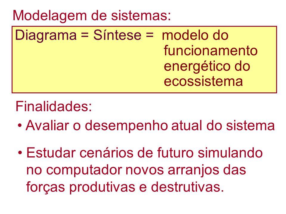 Diagrama = Síntese = modelo do funcionamento energético do ecossistema Finalidades: Avaliar o desempenho atual do sistema Estudar cenários de futuro simulando no computador novos arranjos das forças produtivas e destrutivas.