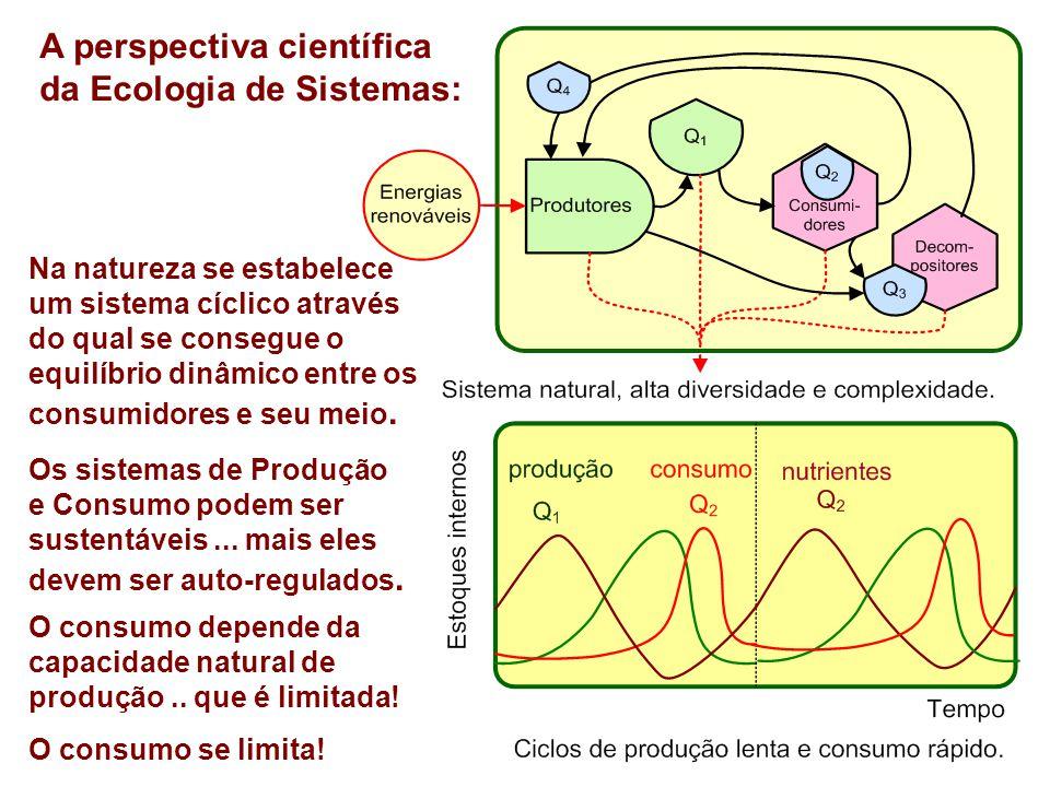 A perspectiva científica da Ecologia de Sistemas: Na natureza se estabelece um sistema cíclico através do qual se consegue o equilíbrio dinâmico entre os consumidores e seu meio.