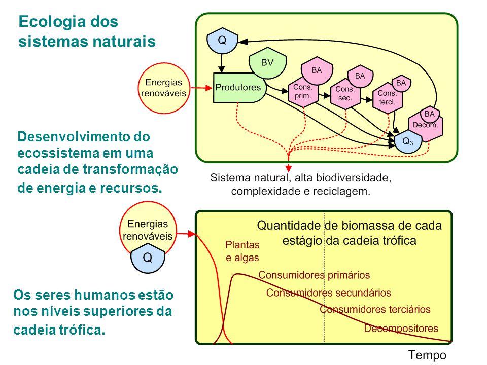 Ecologia dos sistemas humanos que utilizam energia fóssil Como usam estoques finitos e geram impactos grandes: existe a possibilidade de colapso.