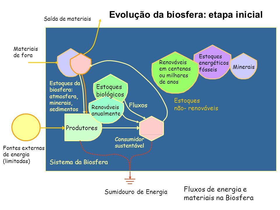 Fontes externas de energia (limitadas) Sumidouro de Energia Sistema da Biosfera Evolução da biosfera: etapa inicial Produtores Estoques da biosfera: atmosfera, minerais, sedimentos Estoques biológicos Estoques energéticos fósseis Consumidor sustentável Renováveis anualmente Minerais Materiais de fora Saída de materiais Renováveis em centenas ou milhares de anos Fluxos Estoques não- renováveis Fluxos de energia e materiais na Biosfera