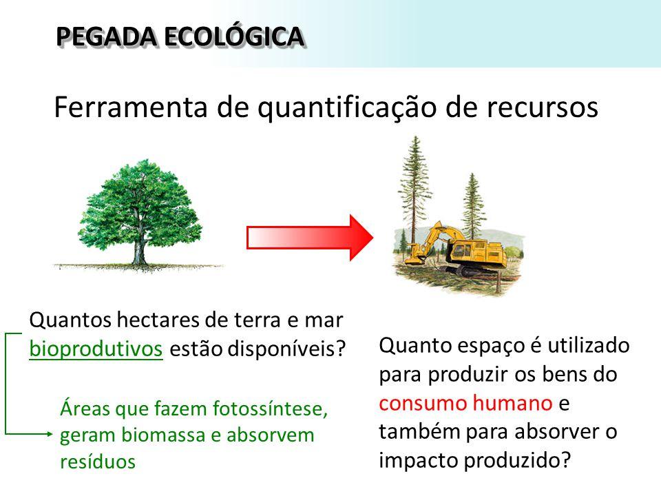 Quanto espaço é utilizado para produzir os bens do consumo humano e também para absorver o impacto produzido.