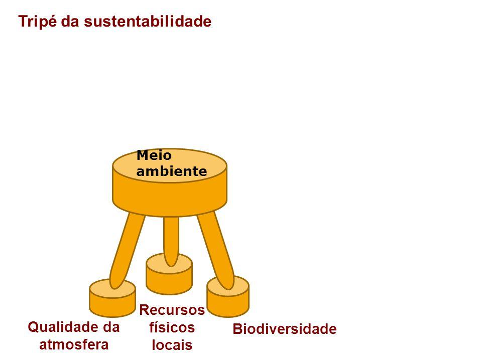 Tripé da sustentabilidade Tamanho da população Sociedade Distribuição espacial Distribuição do poder e do ingresso
