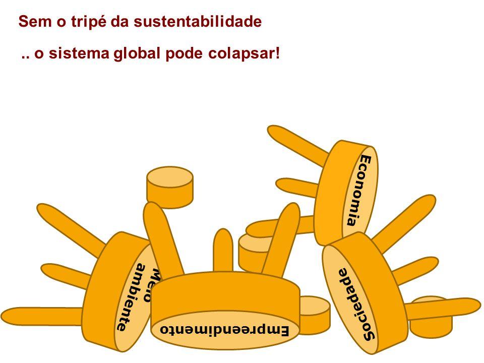 Sem o tripé da sustentabilidade Economia Meio ambiente Sociedade Empreendimento..