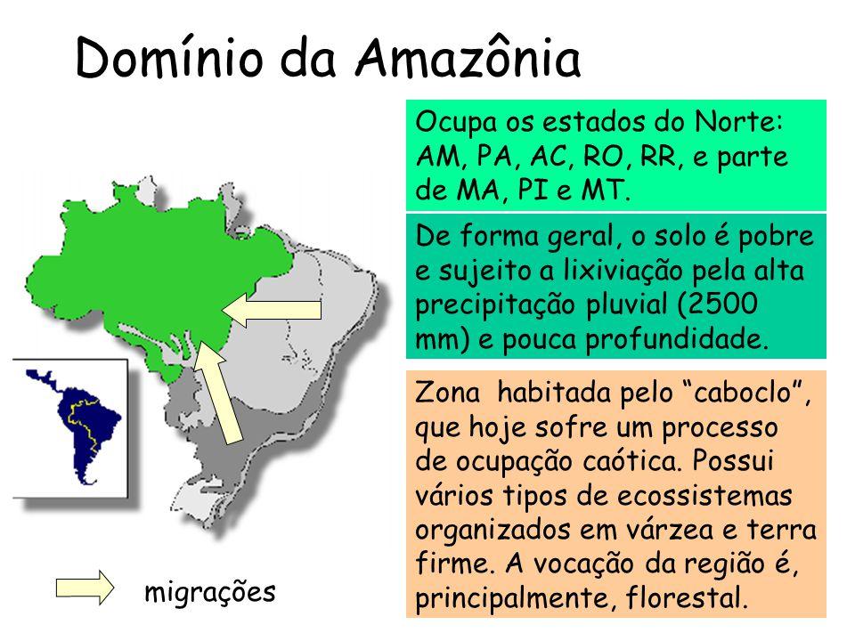 """Domínio da Amazônia Ocupa os estados do Norte: AM, PA, AC, RO, RR, e parte de MA, PI e MT. Zona habitada pelo """"caboclo"""", que hoje sofre um processo de"""
